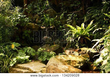 small decorative water and rock garden backyard