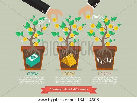 Strategic asset allocation infographic. Business metaphor concept