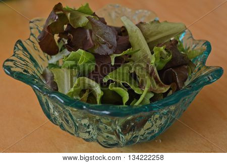 A bowl of salad greens of different colors.