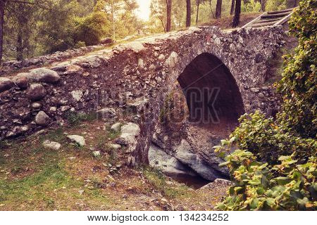 Medieval Venetian bridge in the pine forest on sunset. Wonderful evening in Cyprus. Wide angle. Toned vintage image.