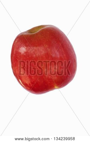 Cripps pink apple (Malus domestica Cripps Pink). Alternate name is Pink lady apple. Image of single apple isolated on white background