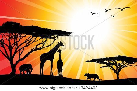 Africa / safari - silhouettes of wild animals in twilight