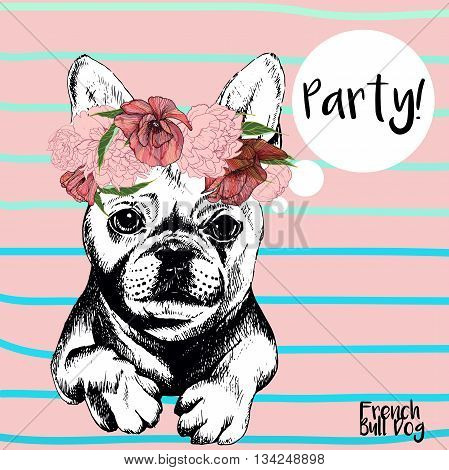 Vector close up portrait of french bulldog girl wearing the flower wreath. Hand drawn domestic pet dog illustration. Isolated on rose background with cerulean stripes.