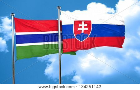 Gambia flag with Slovakia flag, 3D rendering