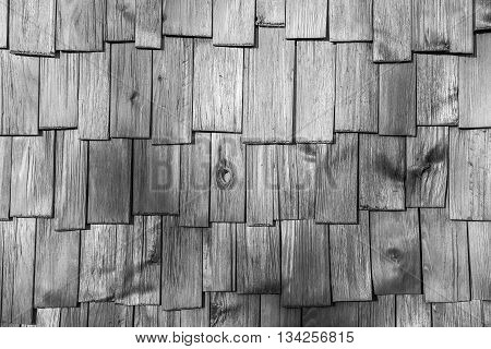closeup surface detail of gray (grey) wood shingle tiles roof texture - use for pattern background in architecture design concept