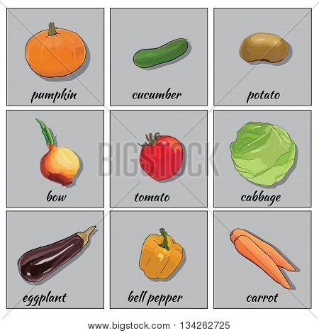 Vector illustration of hand drawn vegetables icon set for web, flat icons. Bulb onions, pumpkin, cabbage, pepper, eggplant, carrot.
