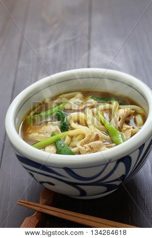 curry udon, japanese noodles soup dish