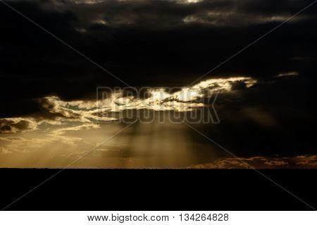 Beautiful - Addo Landscape
