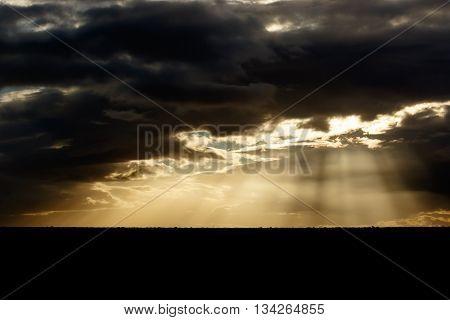 Light - Addo Landscape