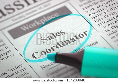 Sales Coordinator - Job Vacancy in Newspaper, Circled with a Azure Highlighter. Blurred Image with Selective focus. Job Search Concept. 3D.