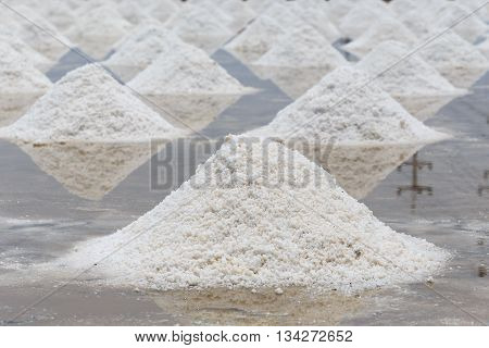 Pile Of Salt In The Salt Sea Salt Farm