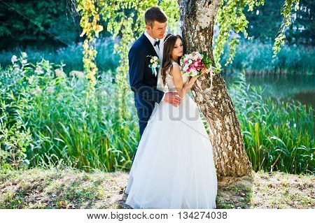 Young wedding couple near birch tree at wedding