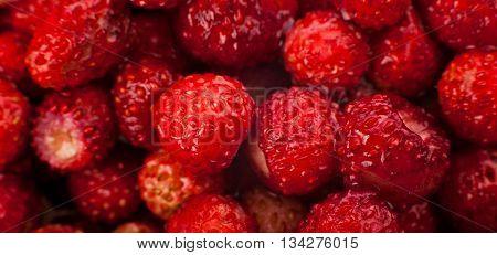 on the background macro strawberries macro fruit