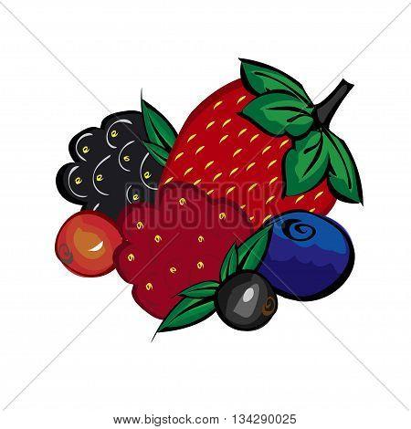 Ripe berries strawberries raspberries blueberries blackberries and currants. Set Juicy delicious berries dessert, tea.