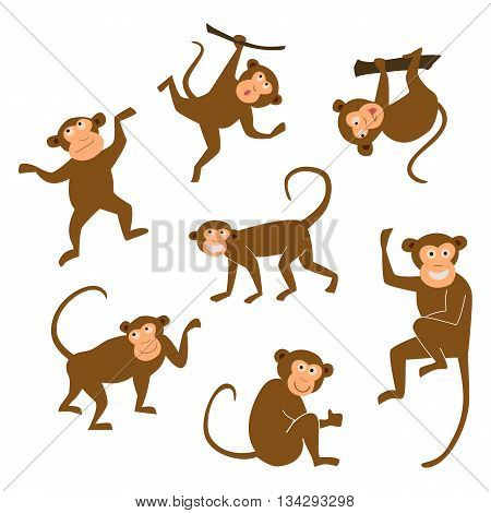 Chinese New Year 2016 monkeys decoration icon. Monkey in east style. Happy ape collection. Chinese Monkey vector illustration. Brown chimpanzee on white isolated background. EPS10