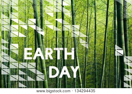Earth Day Environment Conservation Environmentalist Concept
