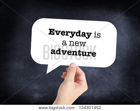 Everyday is a new adventure