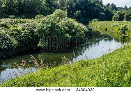 Lush foliage surrounds the Green River as it flows through Kent Washington.