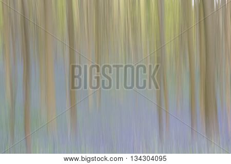 Forest with trees and soft green and blue colors in a motion picture as background or artist impression