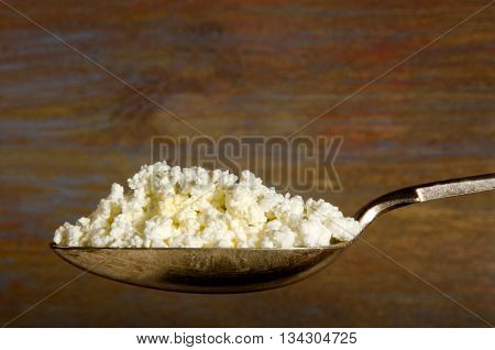fresh home made cottage cheese on a spoon