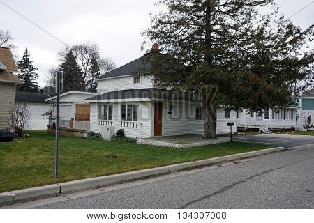 HARBOR SPRINGS, MICHIGAN / UNITED STATES - DECEMBER 24, 2015: A deck was built around a cedar tree (Thuja occidentalis) in front of a home on Fourth Street in Harbor Springs.