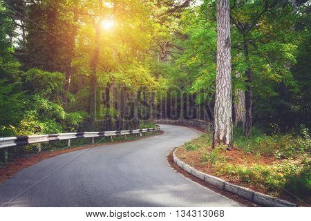 Beautiful landscape with asphalt roadgreen forest and road sign at vibrant sunrise in summer morning. Crimean mountains. Travel background
