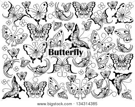 Butterfly design colorless set vector illustration. Coloring book. Black and white line art