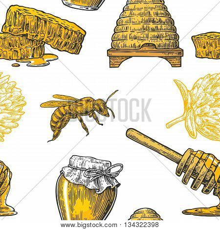 Honey Seamless Pattern. Jars bee and honeycomb. Hand drawn design element. Vector engraved illustration. Isolated on white background.