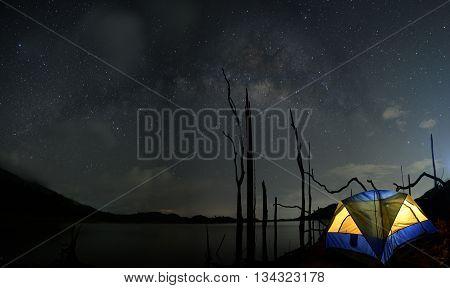 stars night sky, night sky with many stars