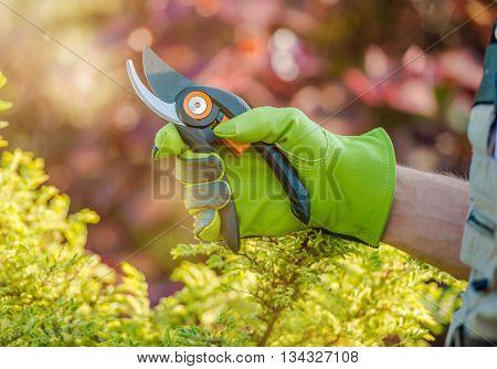 Gardener Ready For Garden Works. Plant Cutter Scissors Closeup Photo.
