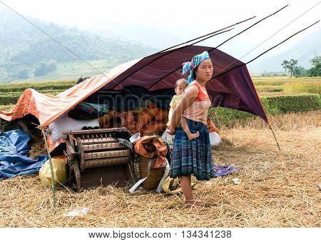 YEN BAI, VIETNAM, September 12, 2015 ethnic Hmong women, carrying children on their backs, where rice fields, high mountains, Yen Bai