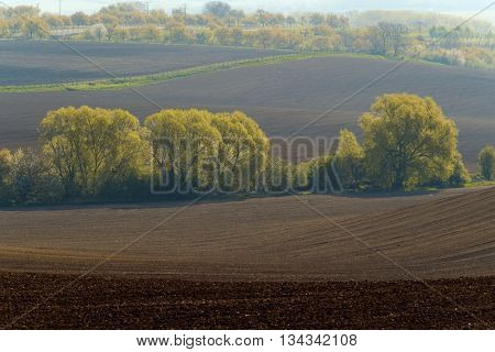 Agricultural tractor working in a plowed field