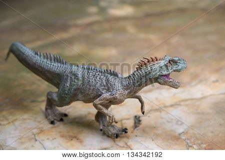 allosaurus toy stands on rock horizontal composition