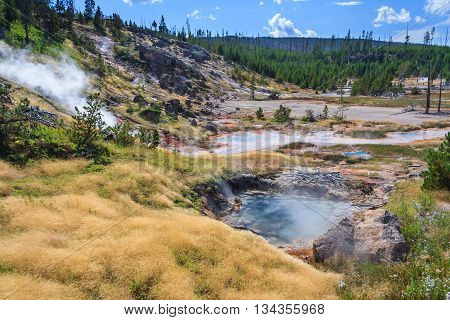 Hot Springs And Geysers At Yellowstone National Park, Wyoming,  Usa