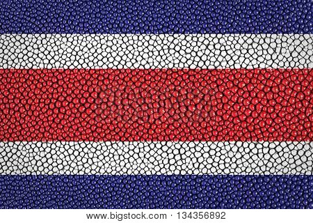 Costa Rica Flag painted on stingray skin texture