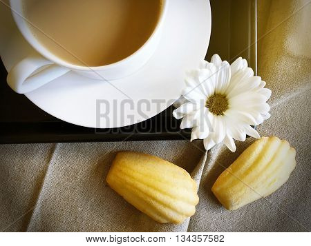French madeleines with coffee and white daisy