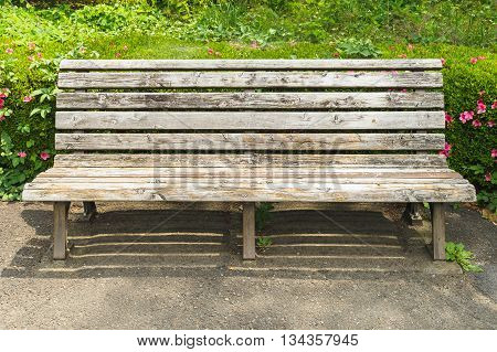 Wooden bench in the park with green grass background