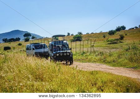 Kenya, Afrrica- March 7, 2016: Safari tours in Masai Mara Game Resort Park in Kenya, Africa