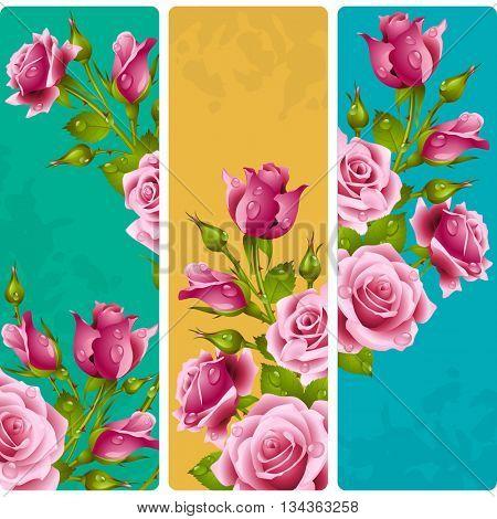 Pink rose frames. Vector set of floral vertical banners