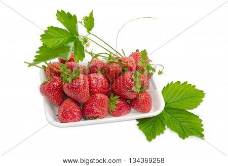 Ripe fresh garden strawberry fruits with leaves stems and flowers in the plastic tray on a light background
