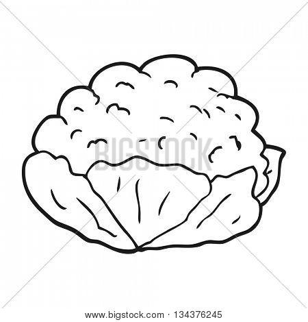 freehand drawn black and white cartoon cauliflower