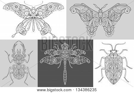 Vector Image butterflies beetles dragonfly. A set of abstract illustrations of insects. Black and white. The concept of unusual design objects of nature.