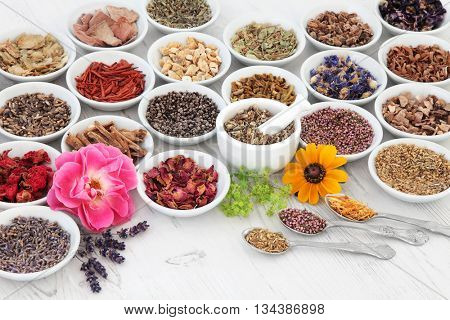 Flower and herb medicine selection used in alternative healing treatments in porcelain bowls with mortar and pestle and old silver spoons over distressed wooden background.