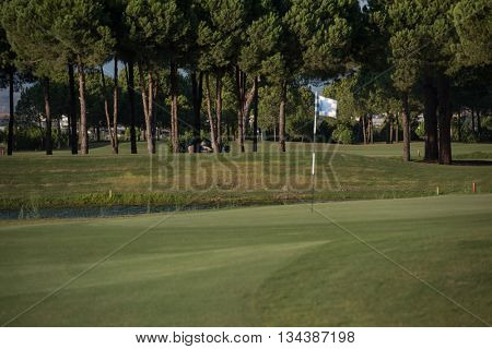 golf course with fresh green grass at beautiful sunny day