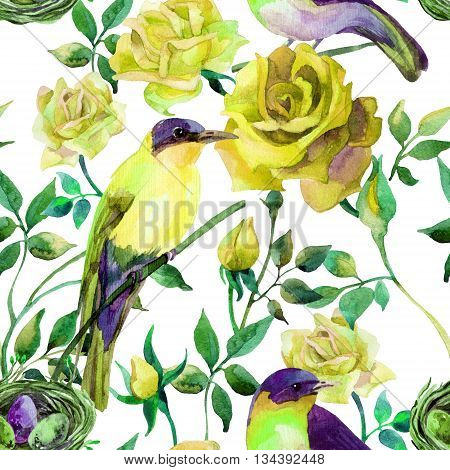 Watercolor birds on the yellow roses. Hand painted seamless pattern on white background