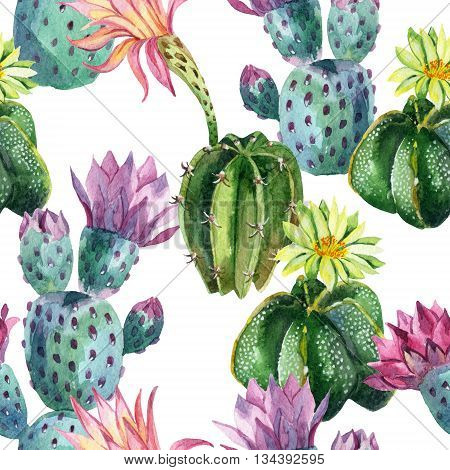 Watercolor seamless cactus pattern. Cacti art background