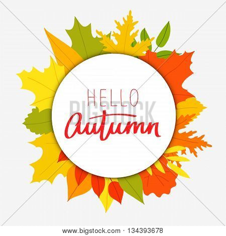 Hello Autumn. The trend calligraphy. Vector illustration on the background of autumn leaves. Concept autumn advertising.