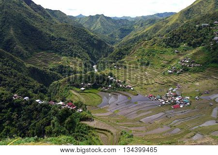 Looking down over the Rice terraces of Batad in the Philippines
