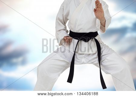 Fighter performing karate stance against cloudy sky