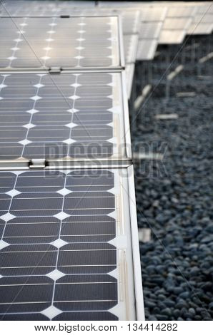 Solar panel photovoltaic to harvest green energy from sun